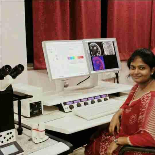 Dr. Pooja Priyadarsini's profile on Curofy