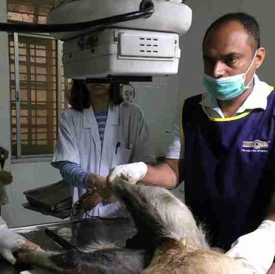Dr. Sandip Pawar's profile on Curofy