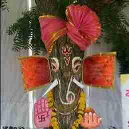 Dr. Padmashree Bakshi's profile on Curofy