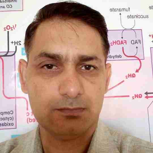 Dr. Urender Singh's profile on Curofy