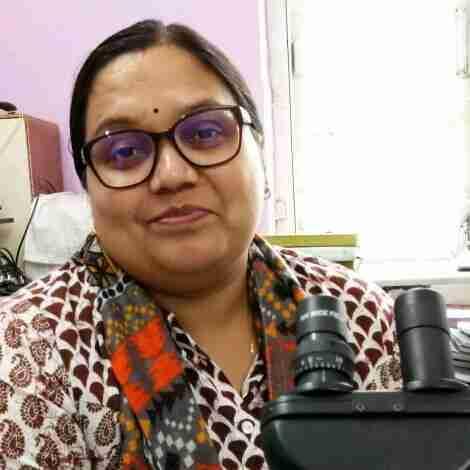 Dr. Nita Mallik's profile on Curofy