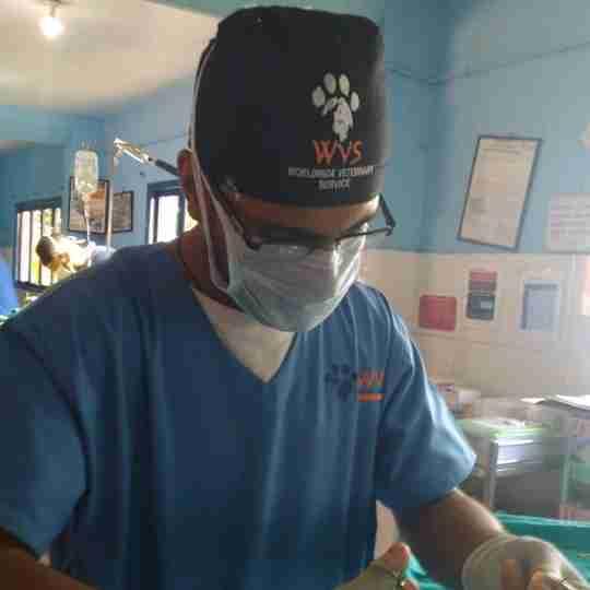 Dr. Vijender Negi's profile on Curofy