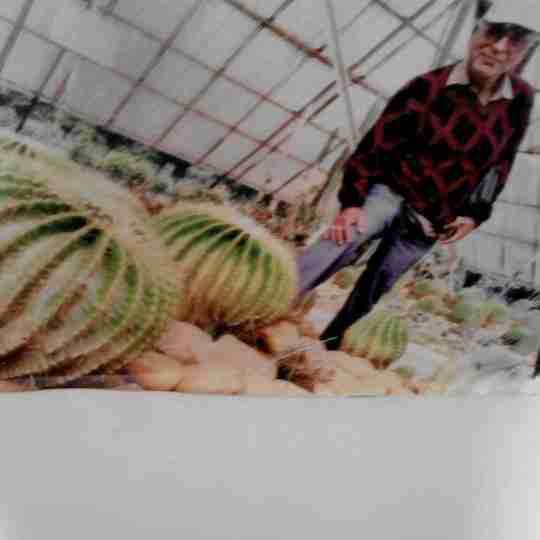 Dr. Dainy Pratap Patra's profile on Curofy