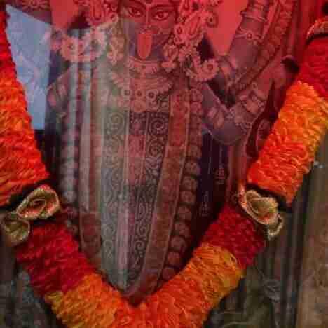 Dhananjay K Singh's profile on Curofy