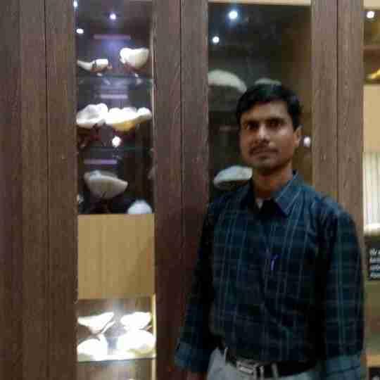 Dr. Elavarasan Thiyagarajan's profile on Curofy