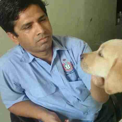 Dr. Sachin Wayal's profile on Curofy