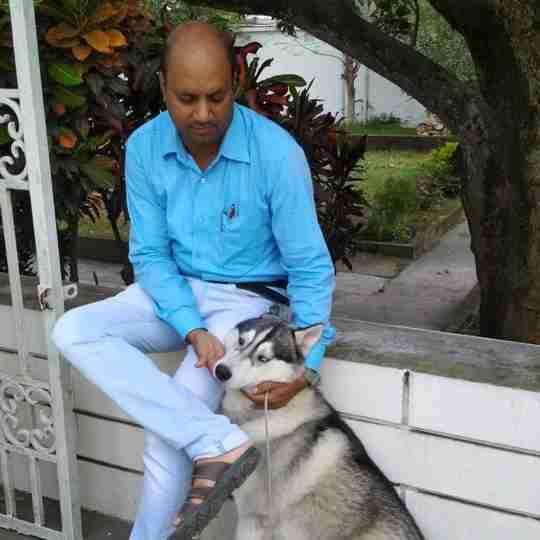 Dr. Anant Sagar's profile on Curofy