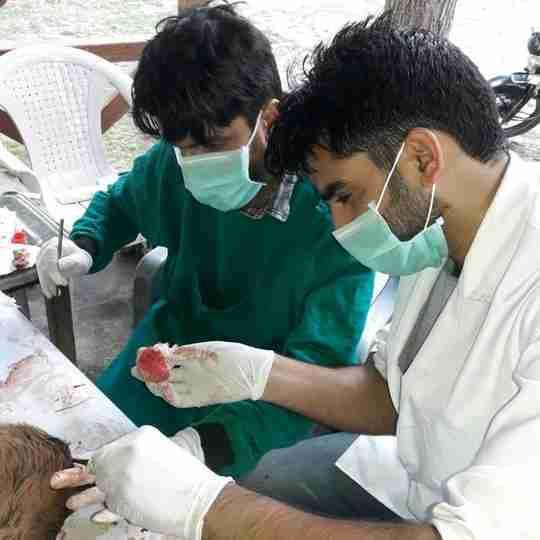 Dr. Muzamil Rashid's profile on Curofy
