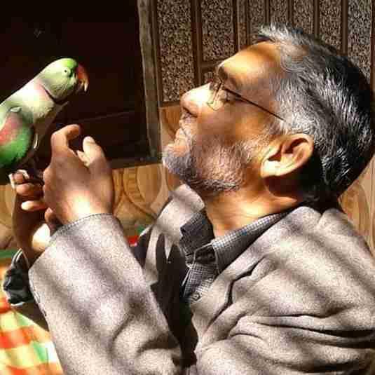 Dr. Abdul Wajid Idrisi's profile on Curofy