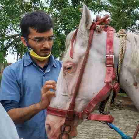 Dr. Pranav Anjaria's profile on Curofy