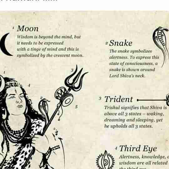 Dr. Tanya Pawar's profile on Curofy