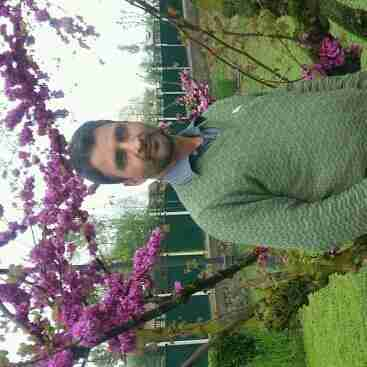 Dr. Syed Zahoor's profile on Curofy