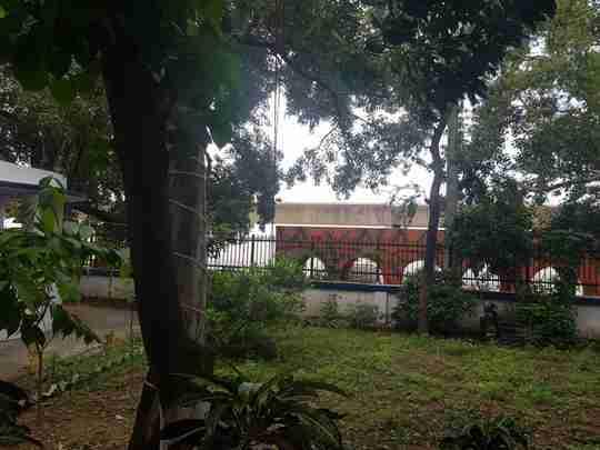Dr. Sandhya Sinha's profile on Curofy