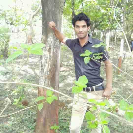 Dr. Chanchlesh Raghuwanshi's profile on Curofy
