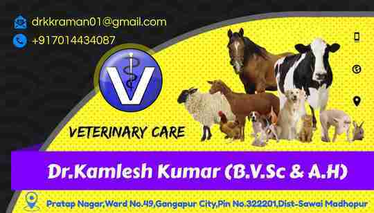 Dr. K.k Raman's profile on Curofy