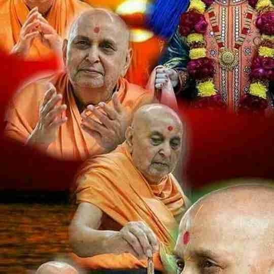 Parth Vaghani's profile on Curofy