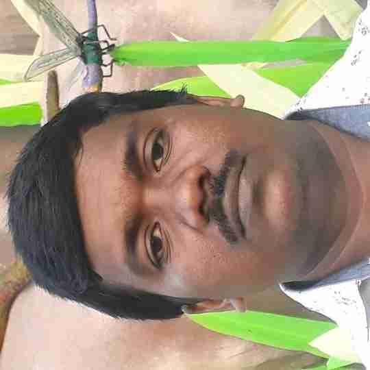 Dr. Subrata Bhunia's profile on Curofy
