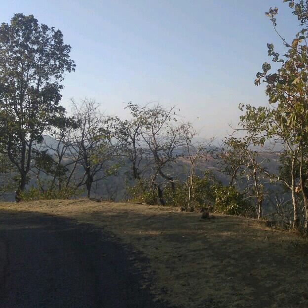 Manasi Bhoye's profile on Curofy