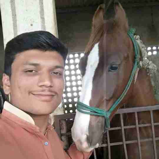 Dr. Raj Godhani's profile on Curofy