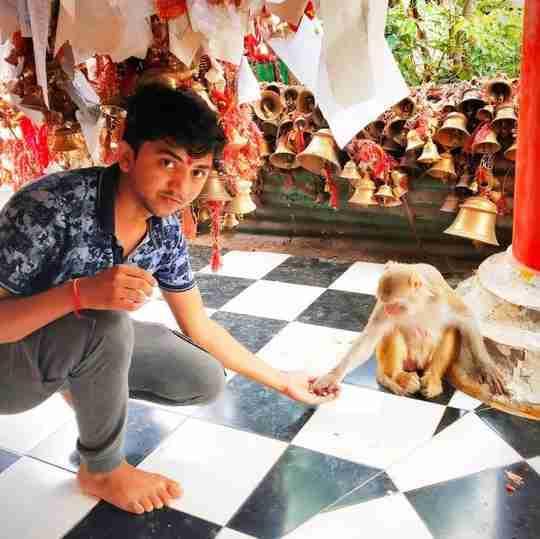 Dr. Hitesh Jangra's profile on Curofy