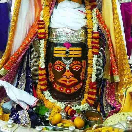 Dr. Vishwa Ratan's profile on Curofy