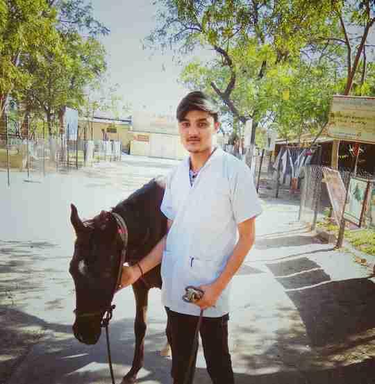 Dr. Abidhusain Balospura's profile on Curofy