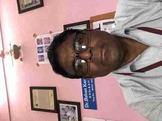 Dr. Banan Kamble's profile on Curofy