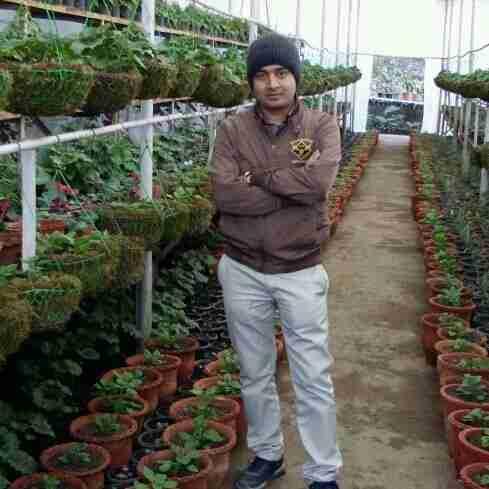 Dr. Lakshman Meena's profile on Curofy