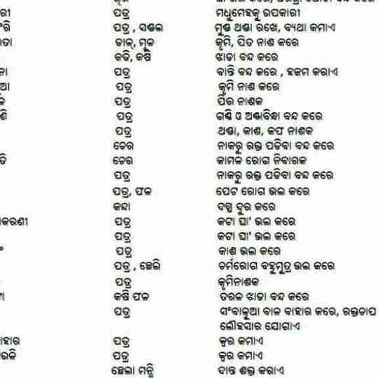 Dr. Ramesh Kumar Rana's profile on Curofy