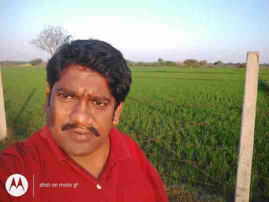 Dr. Jeejula Rakesh's profile on Curofy