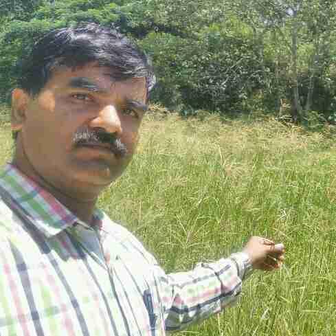 Dr. Mahadevappa Gouri's profile on Curofy