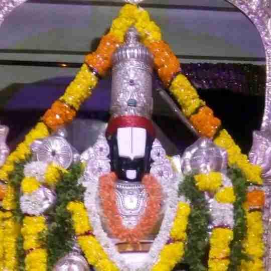 Lavanya Mandala's profile on Curofy